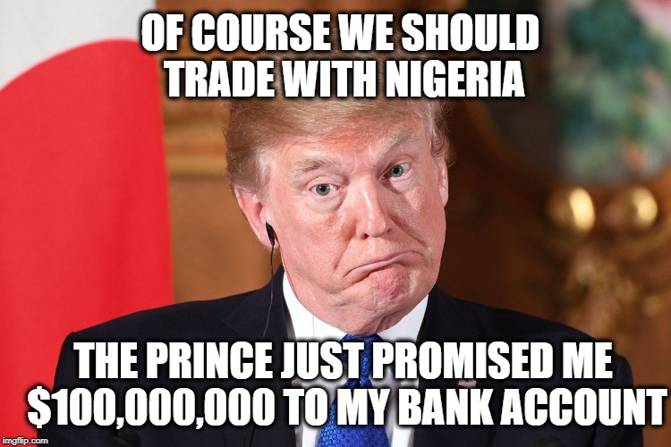 OF COURSE WE SHOULD TRADE WITH NIGERIA THE PRINCE JUST PROMISED ME $100,000,000 TO MY BANK ACCOUNT | image tagged in trump dumbfounded | made w/ Imgflip meme maker