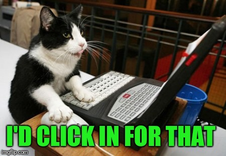 Fact Cat | I'D CLICK IN FOR THAT | image tagged in fact cat | made w/ Imgflip meme maker