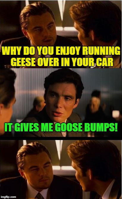 Gander at this one. | WHY DO YOU ENJOY RUNNING GEESE OVER IN YOUR CAR IT GIVES ME GOOSE BUMPS! | image tagged in memes,inception,funny,goose | made w/ Imgflip meme maker