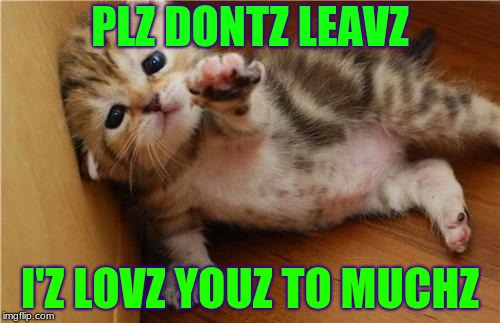Help Me Kitten | PLZ DONTZ LEAVZ I'Z LOVZ YOUZ TO MUCHZ | image tagged in help me kitten | made w/ Imgflip meme maker