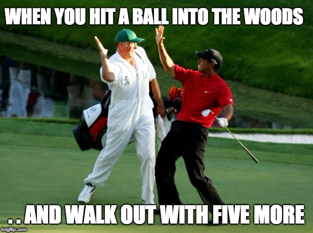 When you suck at golf so you start a ball business  | WHEN YOU HIT A BALL INTO THE WOODS . . AND WALK OUT WITH FIVE MORE | image tagged in woods,golf | made w/ Imgflip meme maker