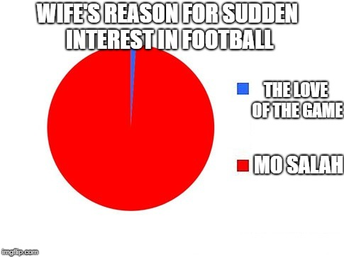 wifes interest in football | WIFE'S REASON FOR SUDDEN INTEREST IN FOOTBALL MO SALAH THE LOVE OF THE GAME | image tagged in circle graph,salah,mo salah,liverpool,football,wife | made w/ Imgflip meme maker