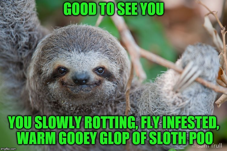 GOOD TO SEE YOU YOU SLOWLY ROTTING, FLY INFESTED, WARM GOOEY GLOP OF SLOTH POO | made w/ Imgflip meme maker