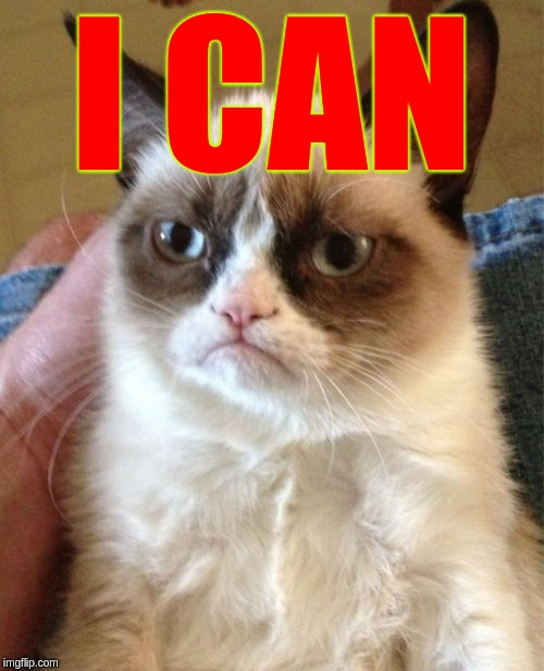 Grumpy Cat Meme | I CAN | image tagged in memes,grumpy cat | made w/ Imgflip meme maker
