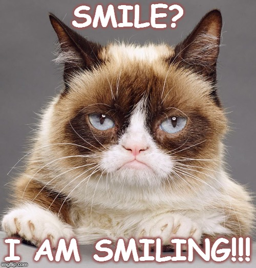 Grumpy Cat Smile | SMILE? I AM SMILING!!! | image tagged in grumpy cat,smile | made w/ Imgflip meme maker