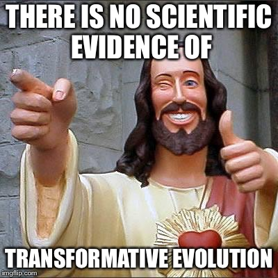Jesus | THERE IS NO SCIENTIFIC EVIDENCE OF TRANSFORMATIVE EVOLUTION | image tagged in jesus | made w/ Imgflip meme maker