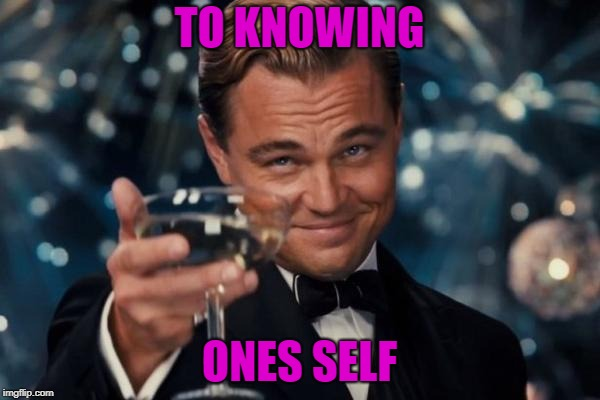Leonardo Dicaprio Cheers Meme | TO KNOWING ONES SELF | image tagged in memes,leonardo dicaprio cheers | made w/ Imgflip meme maker