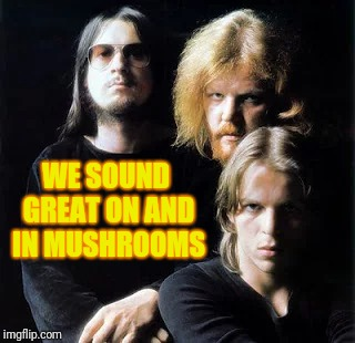 WE SOUND GREAT ON AND IN MUSHROOMS | made w/ Imgflip meme maker