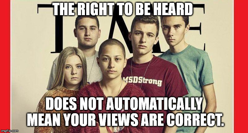 THE RIGHT TO BE HEARD DOES NOT AUTOMATICALLY MEAN YOUR VIEWS ARE CORRECT. | image tagged in parkland | made w/ Imgflip meme maker
