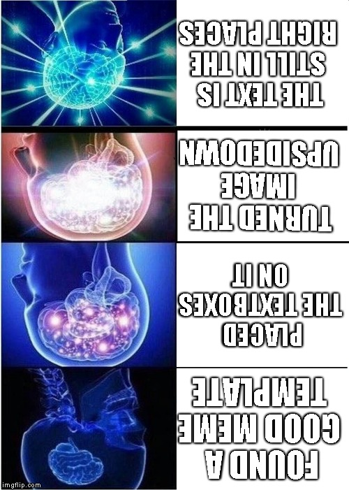 expanding brain meme found a good meme template placed the textboxes on it turned the