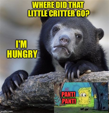 Snack time. | WHERE DID THAT LITTLE CRITTER GO? I'M HUNGRY PANT! PANT! | image tagged in memes,confession bear,spongebob,funny | made w/ Imgflip meme maker