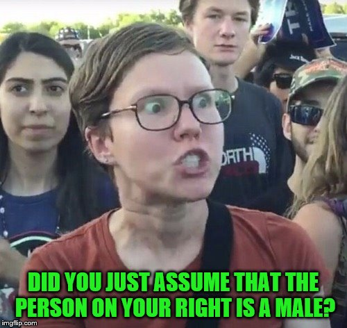 DID YOU JUST ASSUME THAT THE PERSON ON YOUR RIGHT IS A MALE? | made w/ Imgflip meme maker