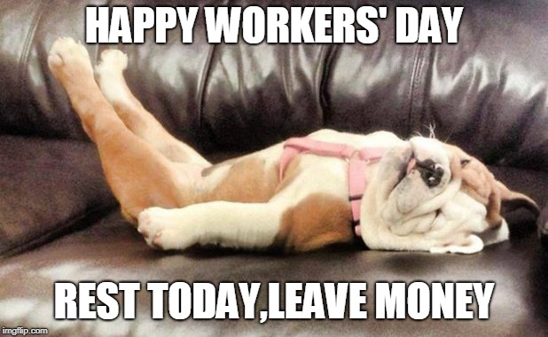 tired dog | HAPPY WORKERS' DAY REST TODAY,LEAVE MONEY | image tagged in worker | made w/ Imgflip meme maker