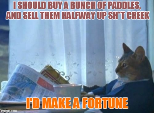 Ingenious. |  I SHOULD BUY A BUNCH OF PADDLES, AND SELL THEM HALFWAY UP SH*T CREEK; I'D MAKE A FORTUNE | image tagged in memes,i should buy a boat cat,paddle,trouble,entrepreneur,that's a paddlin' | made w/ Imgflip meme maker