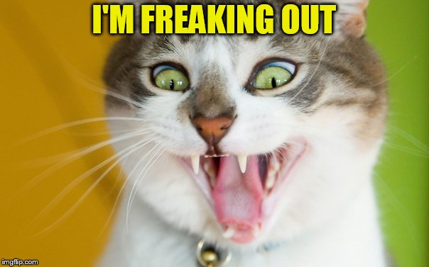 I'M FREAKING OUT | made w/ Imgflip meme maker