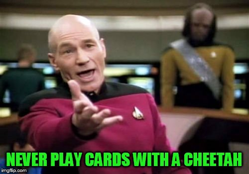 Picard Wtf Meme | NEVER PLAY CARDS WITH A CHEETAH | image tagged in memes,picard wtf | made w/ Imgflip meme maker