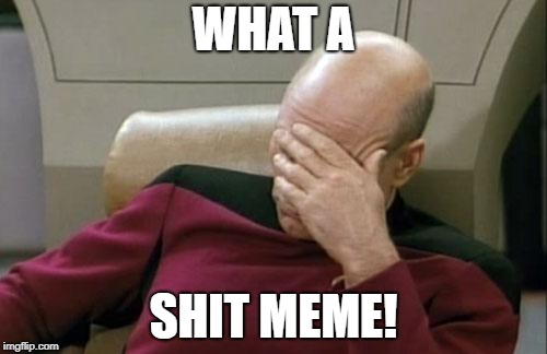 Captain Picard Facepalm Meme | WHAT A SHIT MEME! | image tagged in memes,captain picard facepalm | made w/ Imgflip meme maker