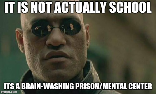 Matrix Morpheus Meme | IT IS NOT ACTUALLY SCHOOL ITS A BRAIN-WASHING PRISON/MENTAL CENTER | image tagged in memes,matrix morpheus | made w/ Imgflip meme maker