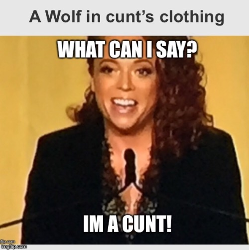 Wolfshencyunte | image tagged in micheunlte,meme | made w/ Imgflip meme maker