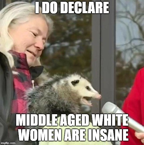 Speach Possum | I DO DECLARE MIDDLE AGED WHITE WOMEN ARE INSANE | image tagged in speach possum,white people,white woman,creeper,rapist,creepy smile | made w/ Imgflip meme maker