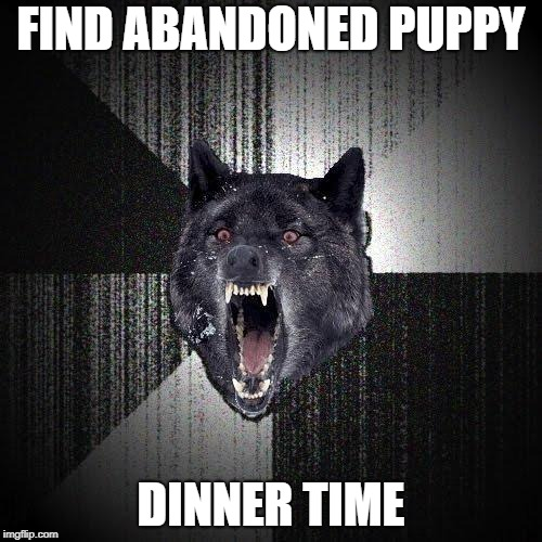 Insanity Wolf Meme | FIND ABANDONED PUPPY DINNER TIME | image tagged in memes,insanity wolf | made w/ Imgflip meme maker