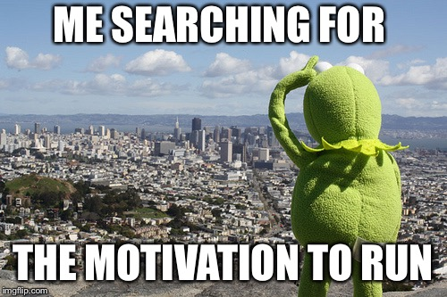 ME SEARCHING FOR THE MOTIVATION TO RUN | image tagged in kermit searching | made w/ Imgflip meme maker