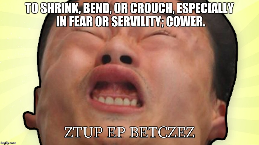 TO SHRINK, BEND, OR CROUCH, ESPECIALLY IN FEAR OR SERVILITY; COWER. ZTUP EP BETCZEZ | made w/ Imgflip meme maker