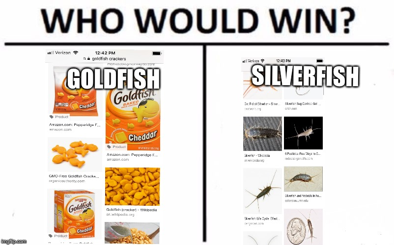 Bronzefish forever | GOLDFISH SILVERFISH | image tagged in memes,who would win,yung mung,goldfish,gold,silver | made w/ Imgflip meme maker