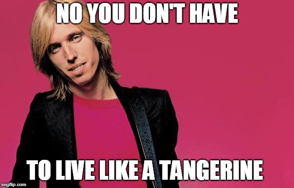 New song for TP! | NO YOU DON'T HAVE TO LIVE LIKE A TANGERINE | image tagged in tom petty,music joke,memes,funny,bad pun | made w/ Imgflip meme maker