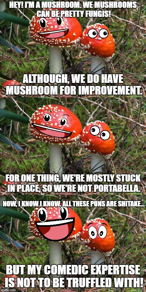 Mushroom Puns | HEY! I'M A MUSHROOM. WE MUSHROOMS CAN BE PRETTY FUNGIS! BUT MY COMEDIC EXPERTISE IS NOT TO BE TRUFFLED WITH! ALTHOUGH, WE DO HAVE MUSHROOM F | image tagged in mushroom joke,puns,mushroom,mushrooms | made w/ Imgflip meme maker