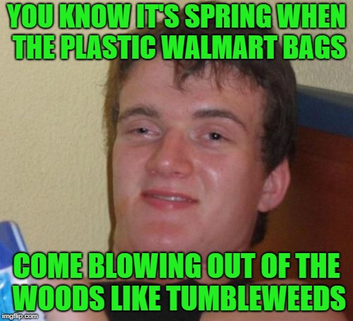 Springtime Finally! | YOU KNOW IT'S SPRING WHEN THE PLASTIC WALMART BAGS COME BLOWING OUT OF THE WOODS LIKE TUMBLEWEEDS | image tagged in memes,10 guy,springtime,windy | made w/ Imgflip meme maker