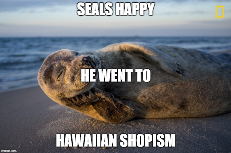 SEALS HAPPY HAWAIIAN SHOPISM HE WENT TO | image tagged in happy seal | made w/ Imgflip meme maker