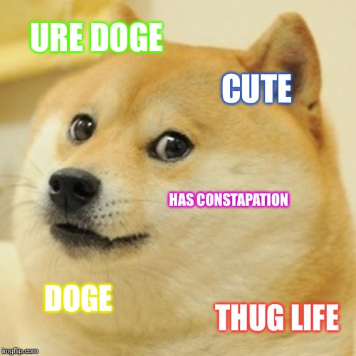 Doge Meme | URE DOGE CUTE HAS CONSTAPATION DOGE THUG LIFE | image tagged in memes,doge | made w/ Imgflip meme maker