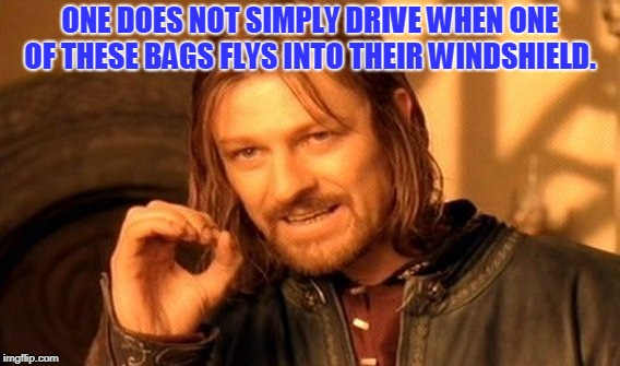 One Does Not Simply Meme | ONE DOES NOT SIMPLY DRIVE WHEN ONE OF THESE BAGS FLYS INTO THEIR WINDSHIELD. | image tagged in memes,one does not simply | made w/ Imgflip meme maker