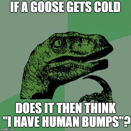 "Philosoraptor Meme | IF A GOOSE GETS COLD DOES IT THEN THINK ""I HAVE HUMAN BUMPS""? 