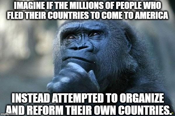 What if... | IMAGINE IF THE MILLIONS OF PEOPLE WHO FLED THEIR COUNTRIES TO COME TO AMERICA INSTEAD ATTEMPTED TO ORGANIZE AND REFORM THEIR OWN COUNTRIES. | image tagged in deep thoughts,illegal immigration,national,secure the border | made w/ Imgflip meme maker