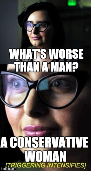 But hey, at least you can safely mock her appearance | . | image tagged in feminism | made w/ Imgflip meme maker