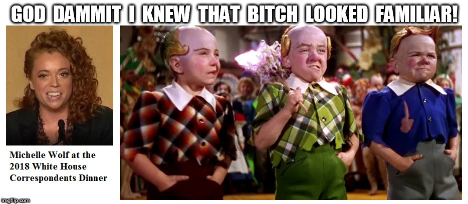 Michelle Wolf and The Lollipop Guild | GOD  DAMMIT  I  KNEW  THAT  B**CH  LOOKED  FAMILIAR! | image tagged in michelle wolf | made w/ Imgflip meme maker