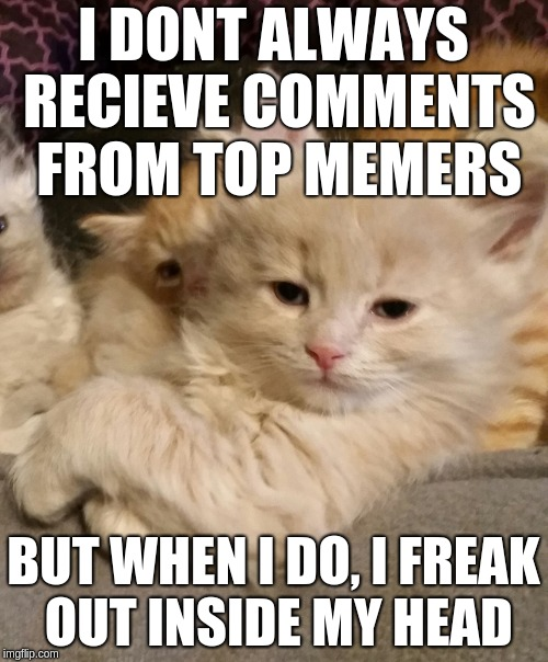 I DONT ALWAYS RECIEVE COMMENTS FROM TOP MEMERS BUT WHEN I DO, I FREAK OUT INSIDE MY HEAD | made w/ Imgflip meme maker
