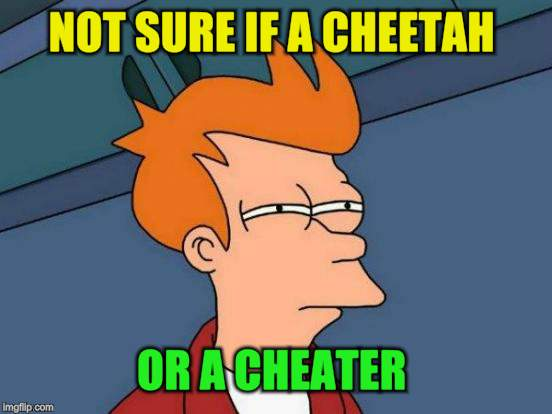 Futurama Fry Meme | NOT SURE IF A CHEETAH OR A CHEATER | image tagged in memes,futurama fry | made w/ Imgflip meme maker
