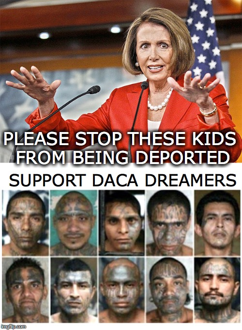 Save The Children | PLEASE STOP THESE KIDS FROM BEING DEPORTED SUPPORT DACA DREAMERS | image tagged in daca,dreamers,nancy pelosi,illegal immigration | made w/ Imgflip meme maker