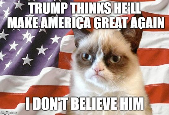 grumpy cat america | TRUMP THINKS HE'LL MAKE AMERICA GREAT AGAIN I DON'T BELIEVE HIM | image tagged in grumpy cat america | made w/ Imgflip meme maker