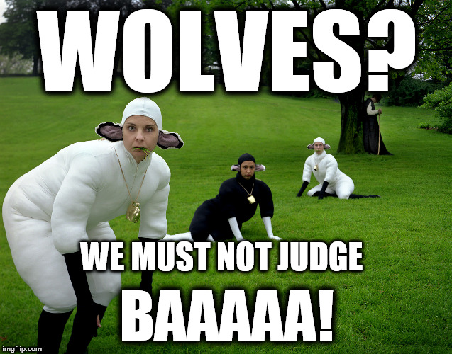 Sheep won't judge | WOLVES? BAAAAA! WE MUST NOT JUDGE | image tagged in sheep,sheeple,don't judge idiots,soy-boys,morons | made w/ Imgflip meme maker