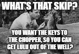 WHAT'S THAT SKIP? YOU WANT THE KEYS TO THE CHOPPER, SO YOU CAN GET LULU OUT OF THE WELL? | made w/ Imgflip meme maker