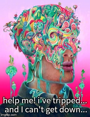 help me! i've tripped... and I can't get down... | image tagged in melting acid brain | made w/ Imgflip meme maker