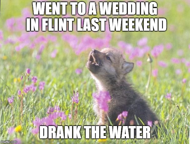 Baby Insanity Wolf Meme | WENT TO A WEDDING IN FLINT LAST WEEKEND DRANK THE WATER | image tagged in memes,baby insanity wolf,AdviceAnimals | made w/ Imgflip meme maker