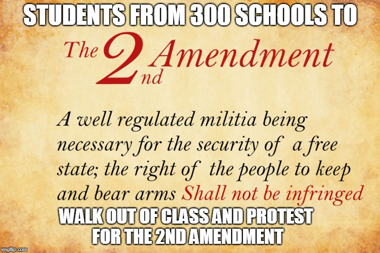 STUDENTS FROM 300 SCHOOLS TO WALK OUT OF CLASS AND PROTEST FOR THE 2ND AMENDMENT | image tagged in 2nd amendment | made w/ Imgflip meme maker