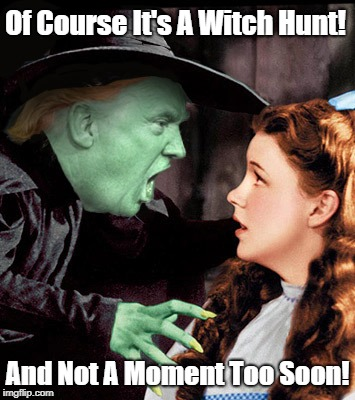 """Of Course It's A Witch Hunt! And Not A Moment Too Soon!"" 