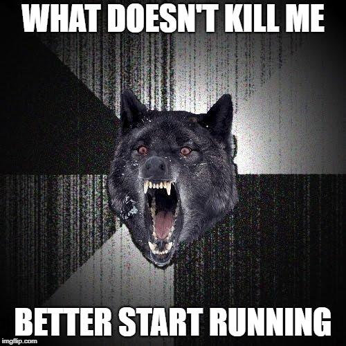 Words to live by! | WHAT DOESN'T KILL ME BETTER START RUNNING | image tagged in memes,insanity wolf,what doesn't kill me,fight,inspirational quote | made w/ Imgflip meme maker