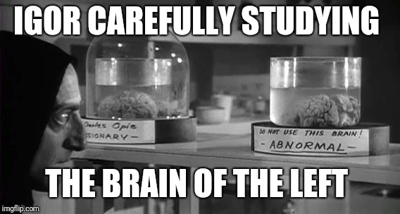 Abby Normal Brain | IGOR CAREFULLY STUDYING THE BRAIN OF THE LEFT | image tagged in abby normal brain | made w/ Imgflip meme maker